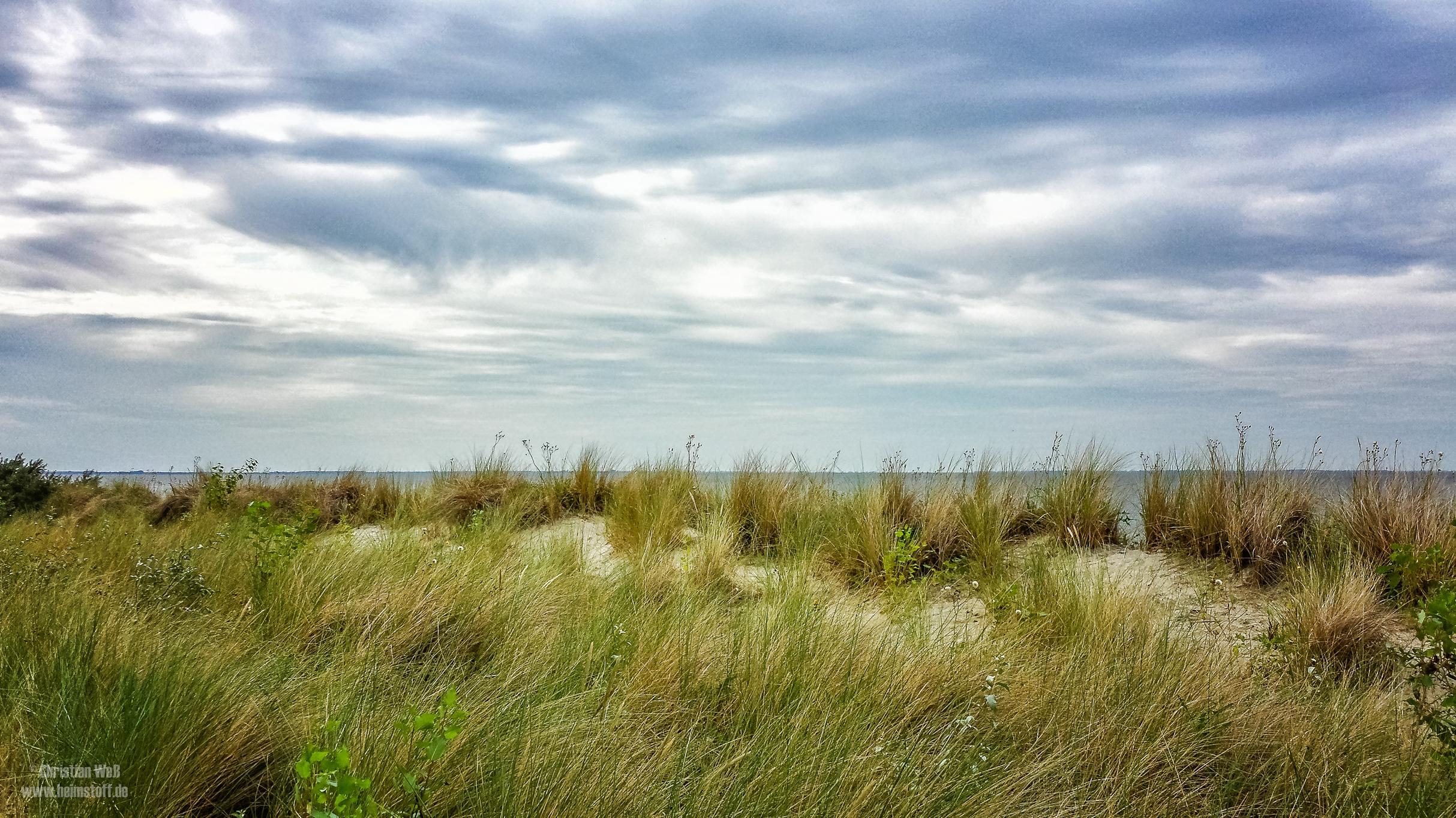 Blick über die Dünen von Lubmin.