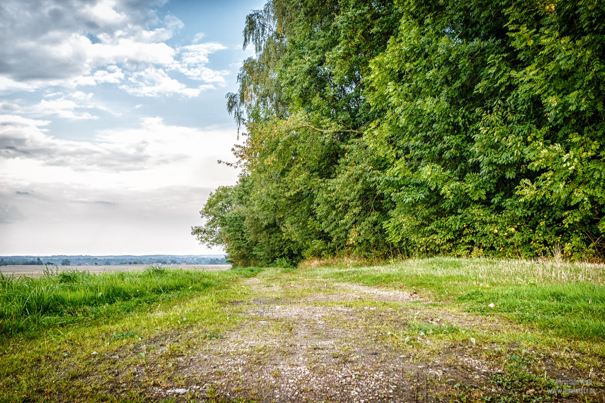 Feldweg zur Goliklache.