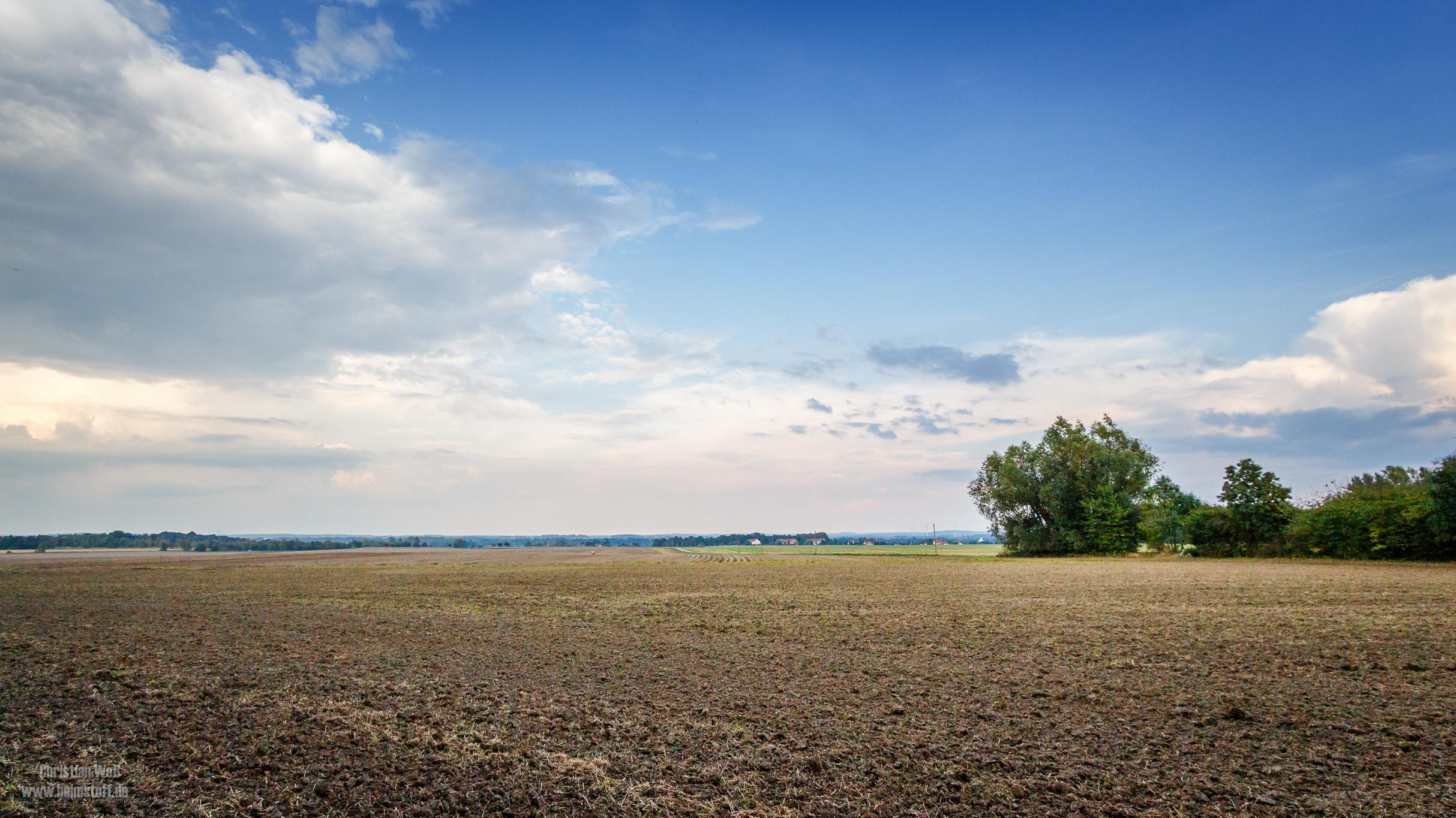 Ein Feld.