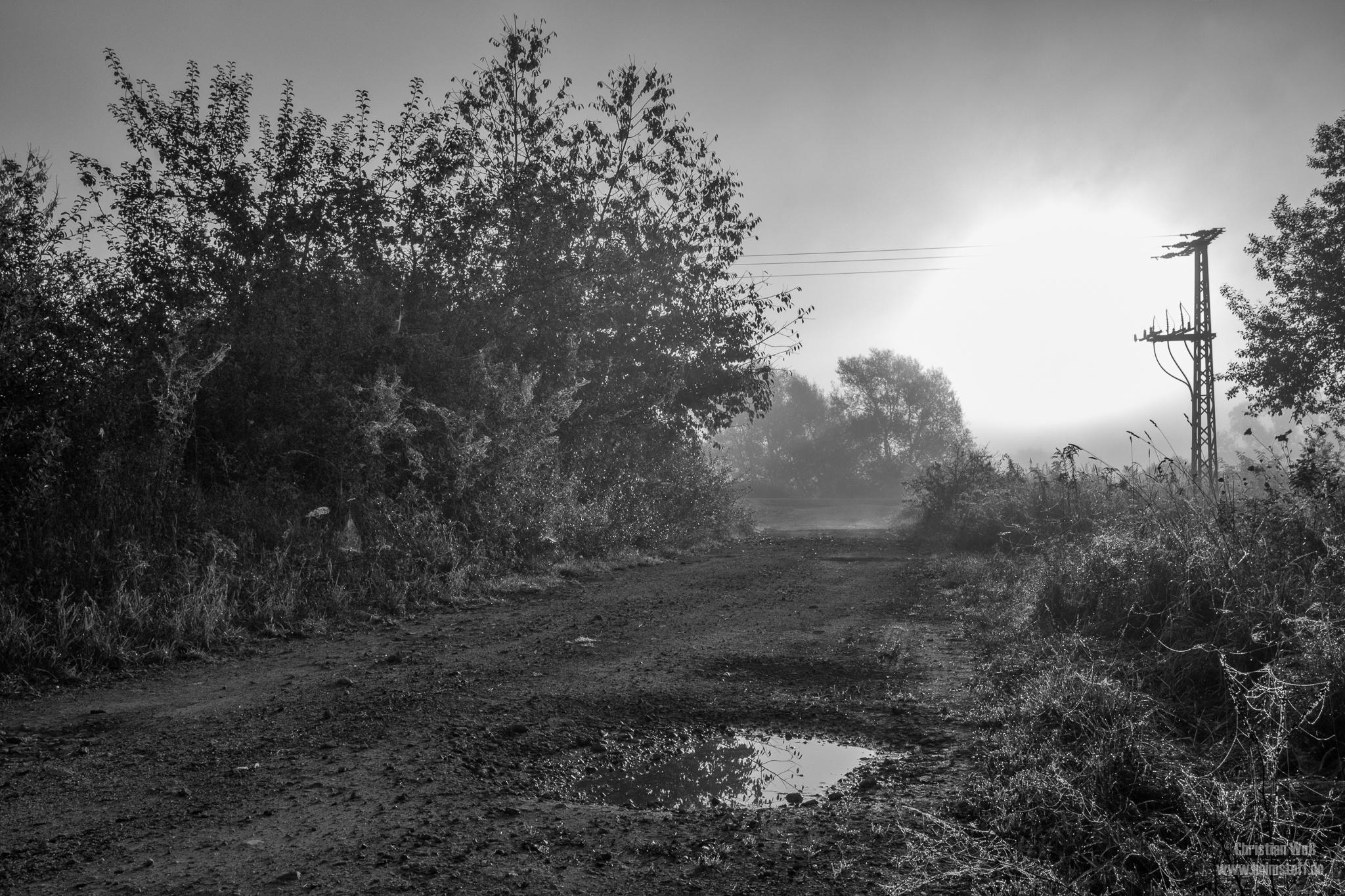 Sonnenaufgang im Nebel.