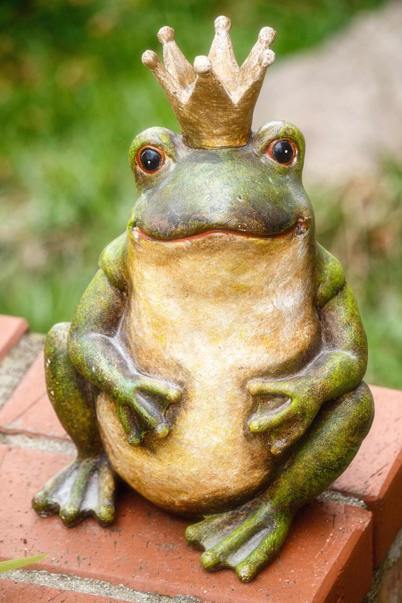 Der Froschkönig.