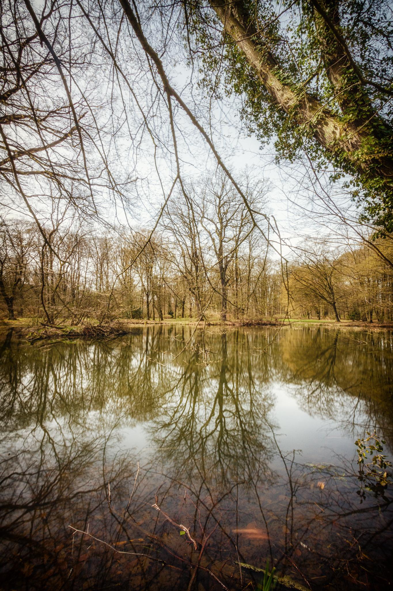 Stadtpark Rothenburg.