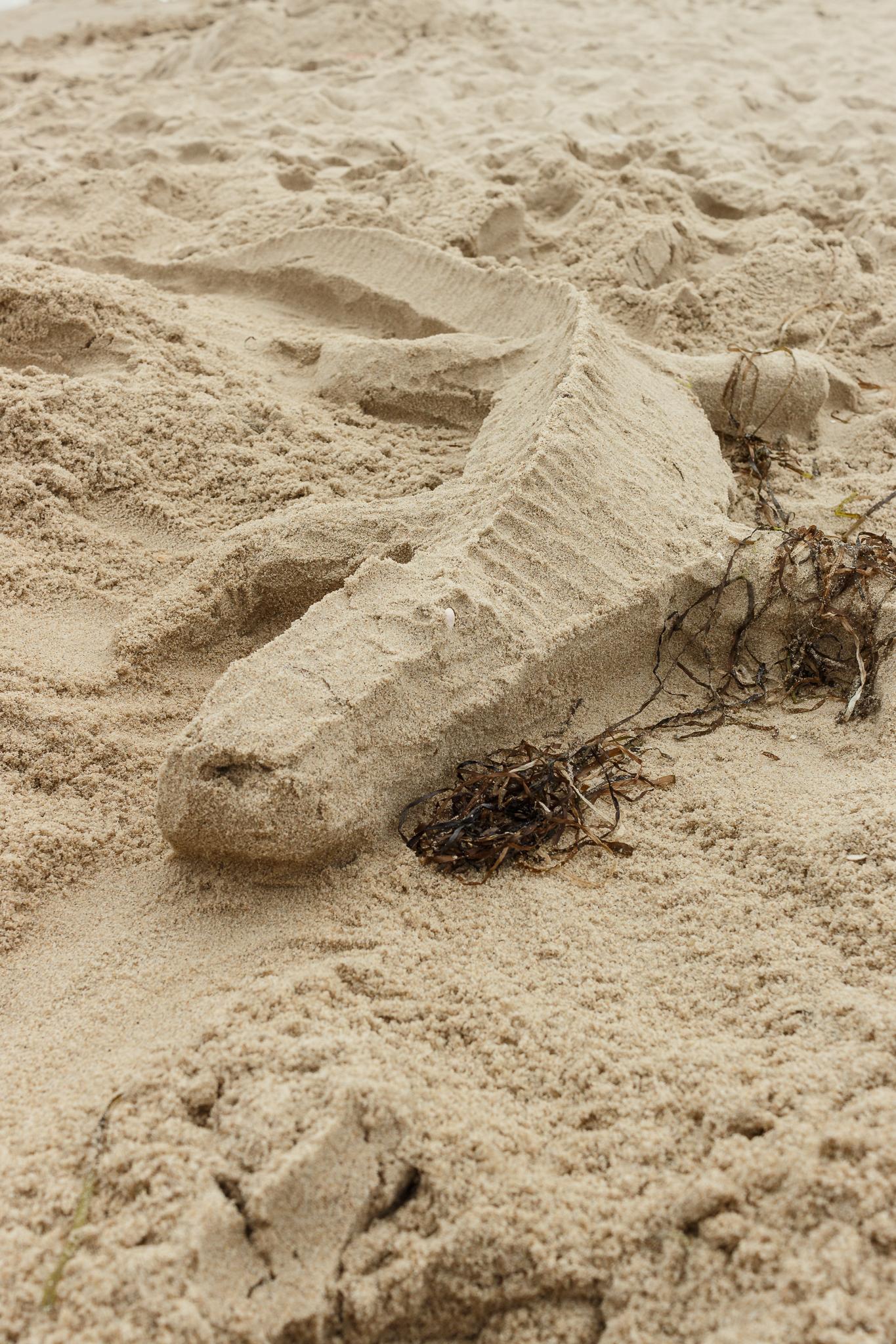 Zwei Schaufeln. Sand. Drei Männer. - Ein Krokodil.