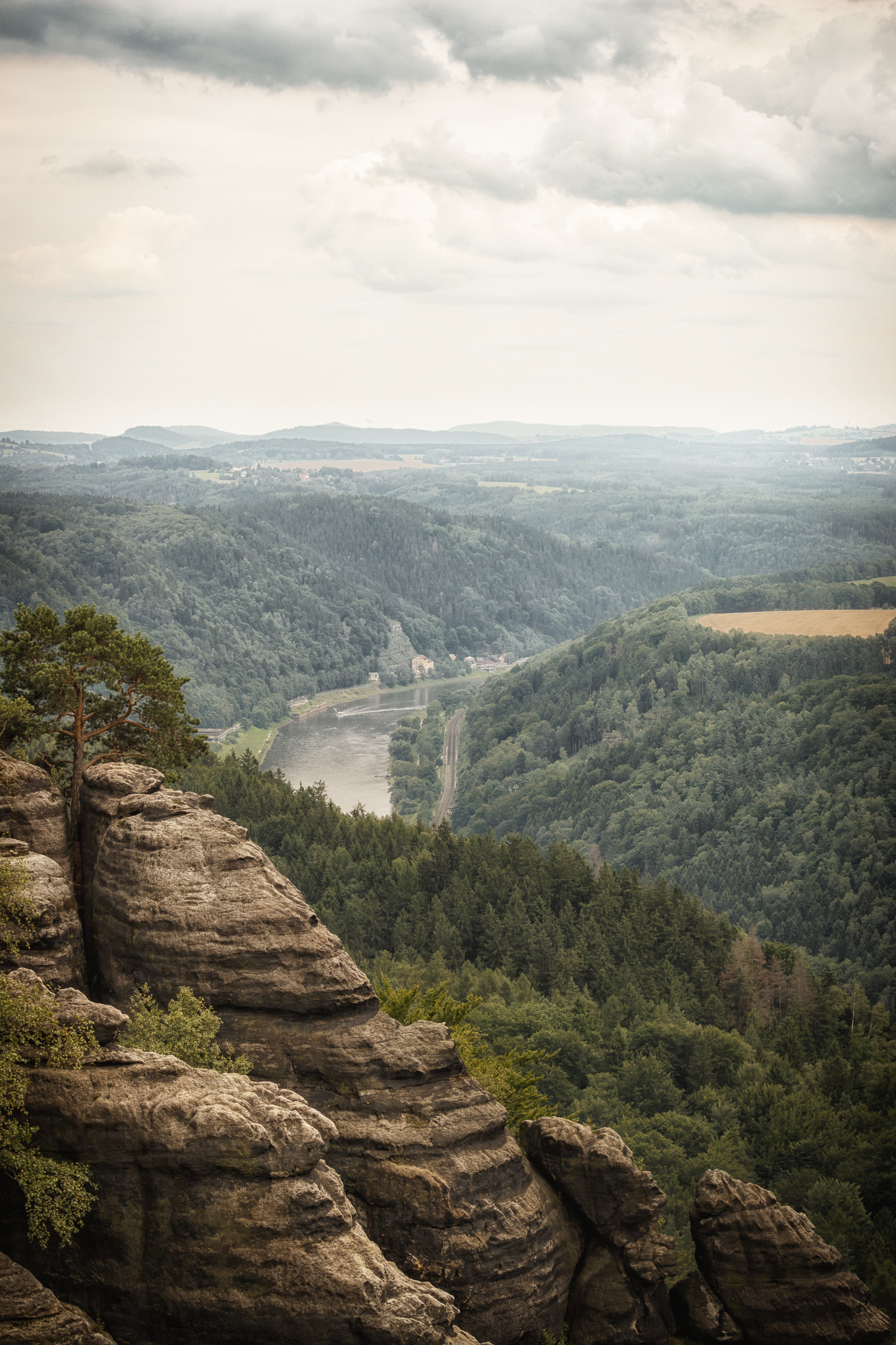 Fels. Wald. Elbe.