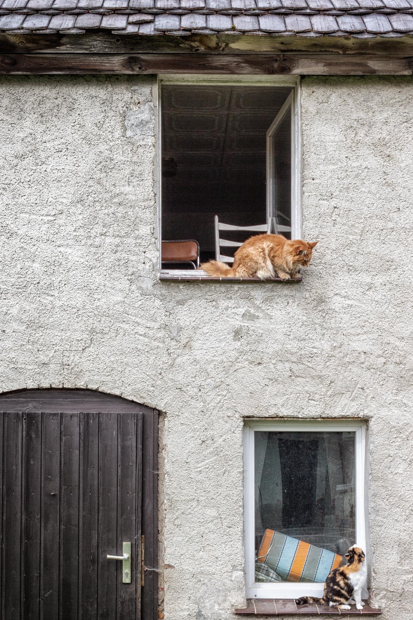 Nachbarn.