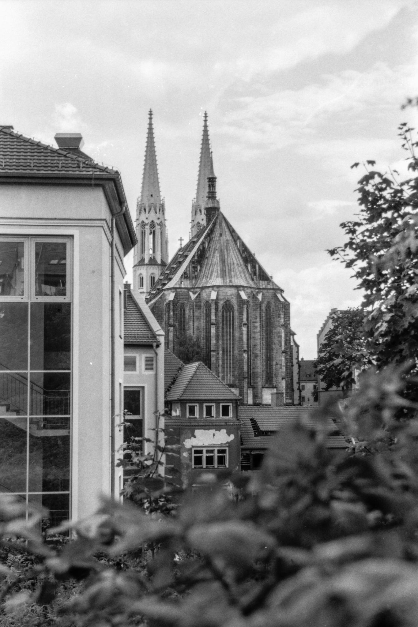 Peterskirche aus zweiter Reihe.